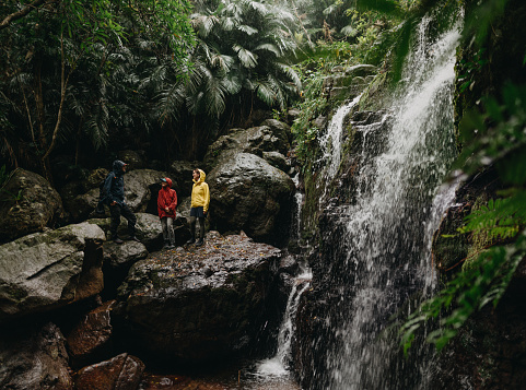Family having a break during hiking by jungle waterfall in the rain - gettyimageskorea