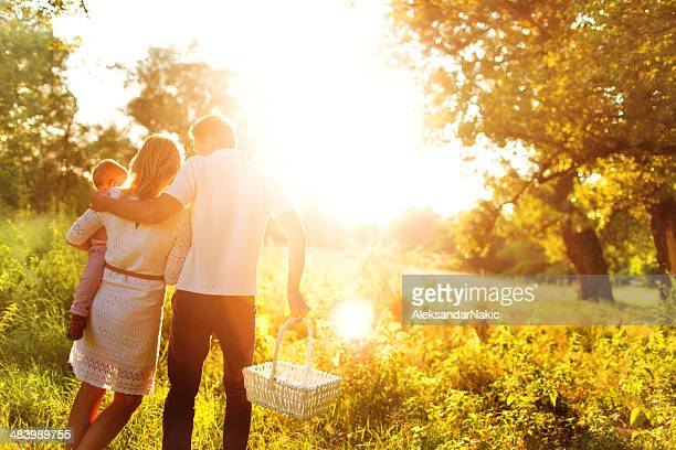a family having a picnic in a brightly lit field - brightly lit stock photos and pictures