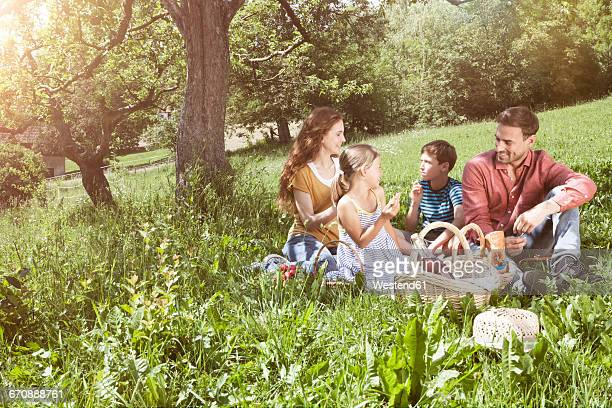 family having a picnic in meadow - picknick stock-fotos und bilder