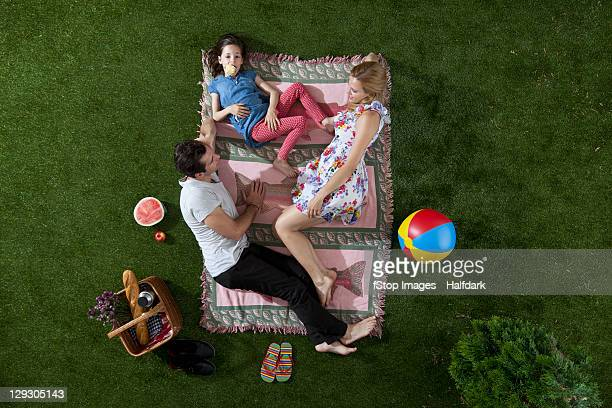 A family having a picnic in the park, overhead view
