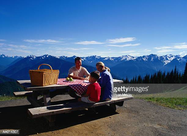 Family Having a Picnic on Hurricane Ridge
