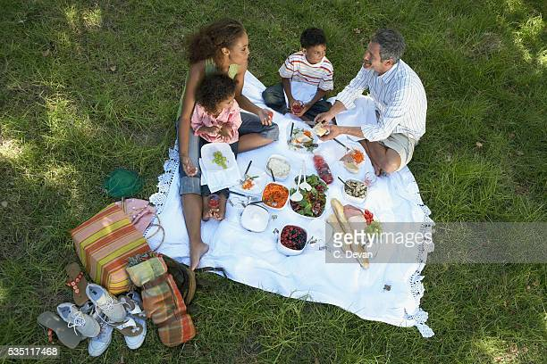 family having a picnic - picknick stockfoto's en -beelden