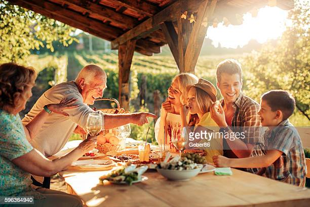 family having a picnic - multigenerational family stock photos and pictures