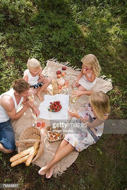 a family having a picnic - picknick stockfoto's en -beelden