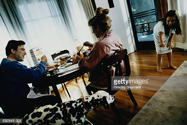 family having breakfast, daughter (7-9) playing with dog - dog eats out girl stock pictures, royalty-free photos & images