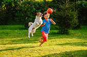 Family having fun outdoor with dog and basketball ball
