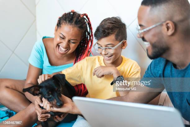 family having fun with their pet - images of black families stock pictures, royalty-free photos & images