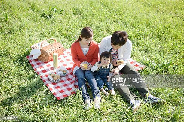 Family having light meal in green field, high angle view