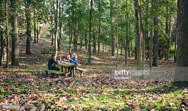 Family having picnic in the woods