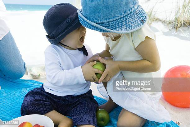'Family having picnic on beach, siblings fighting over apple'