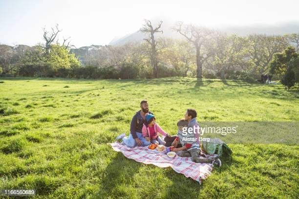 family having picnic together in a grassy park - picnic stock pictures, royalty-free photos & images