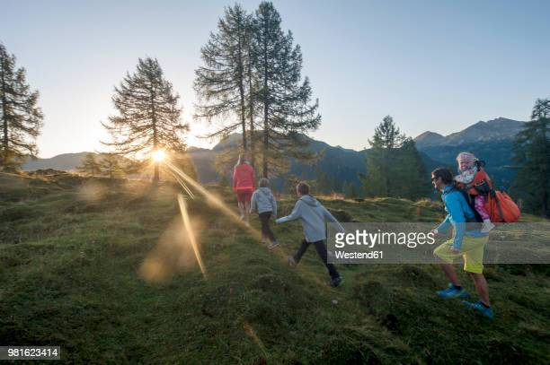 family hiking in alpine meadow at sunset - vie simple photos et images de collection
