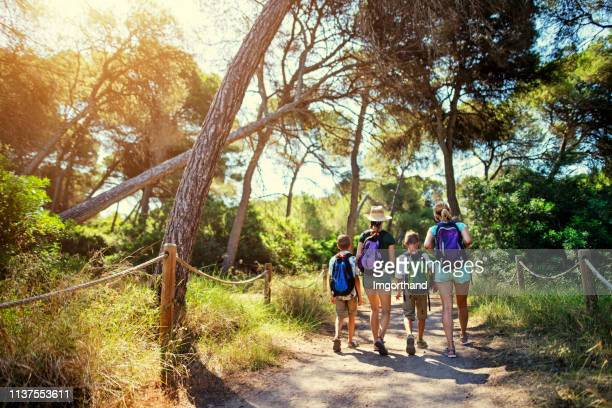 family hiking in forest in majorca, spain - mediterranean culture stock pictures, royalty-free photos & images