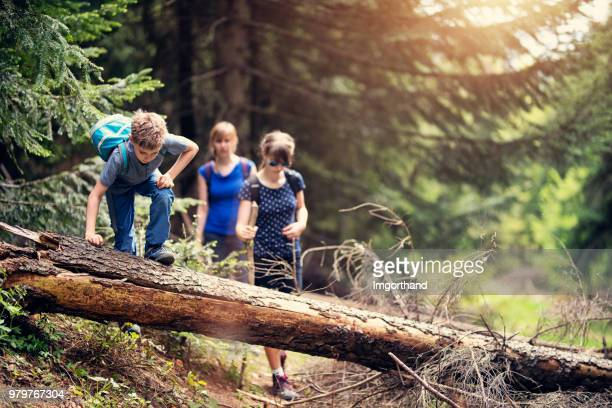 family hiking in forest - imgorthand stock photos and pictures