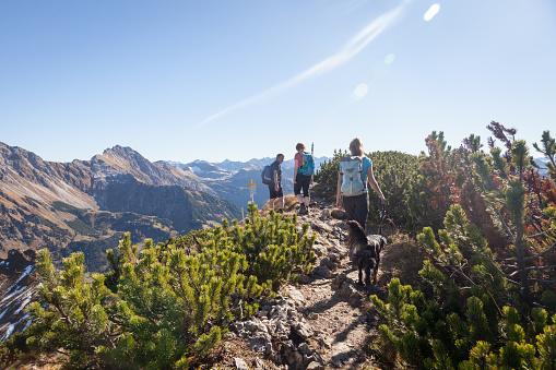 Family hiking in the beautiful Allgaeu Alps - gettyimageskorea