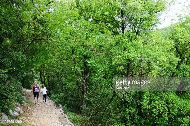 family hiking in the woods - ivanjekic stock pictures, royalty-free photos & images