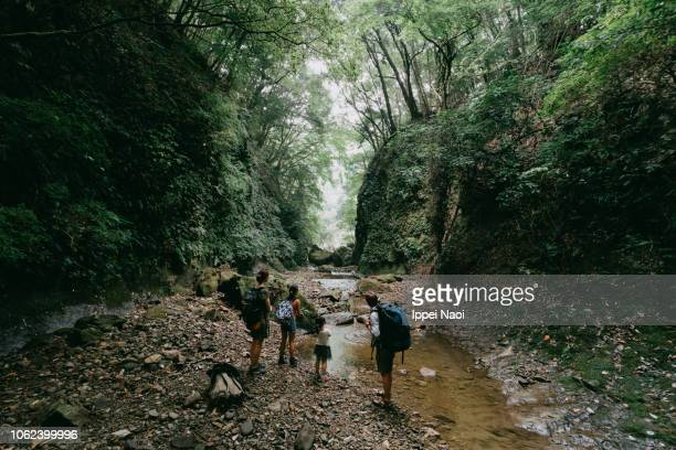 Family hiking through wild ravine in forest, Japan
