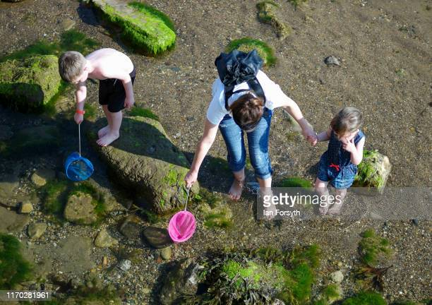A family hunt for crabs in the rock pools on Scarborough beach on Bank Holiday Monday on August 26 2019 in Scarborough United Kingdom Temperatures...