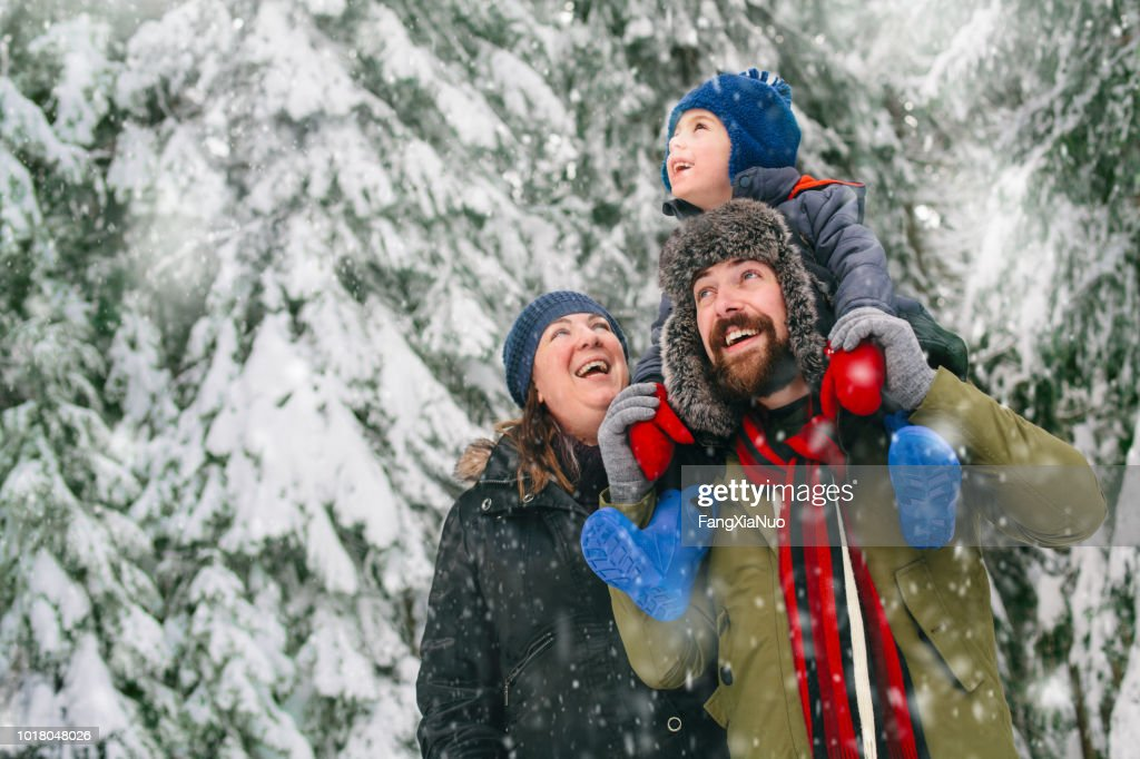 Family in a winter walk : Stock Photo