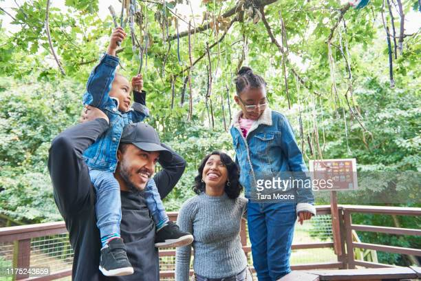 family in nature reserve - nature reserve stock pictures, royalty-free photos & images