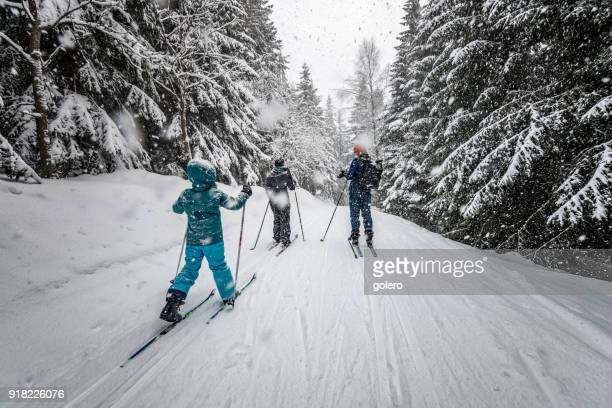familie in het besneeuwde winterlandschap op cross-country-cross-country-ski