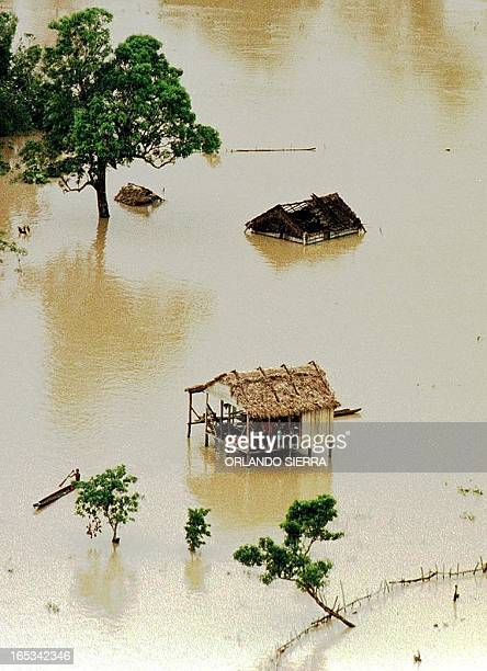 A family in the La Mosquitia province northeast Honduras waits to be rescued 03 November from flood waters of the Segovia River after the passage of...