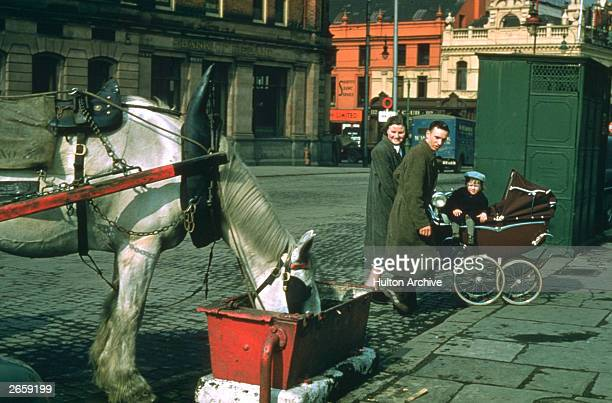 A family is amused by a horse drinking from a trough in Dublin