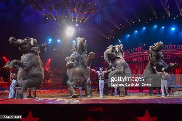 Family Joy Gartner and their elephants perform during the 43rd International Circus Festival of MonteCarlo on January 18 2019 in Monaco Monaco
