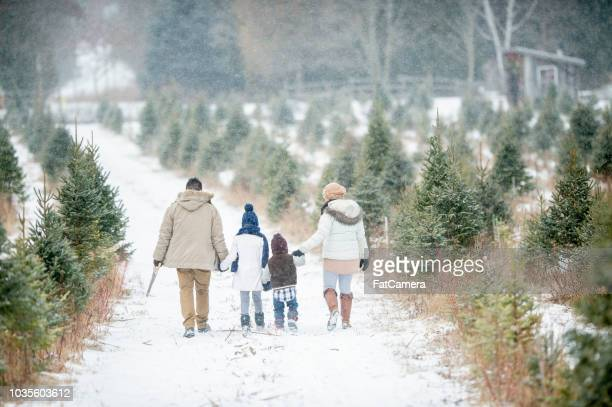family looking for a tree - country christmas stock pictures, royalty-free photos & images