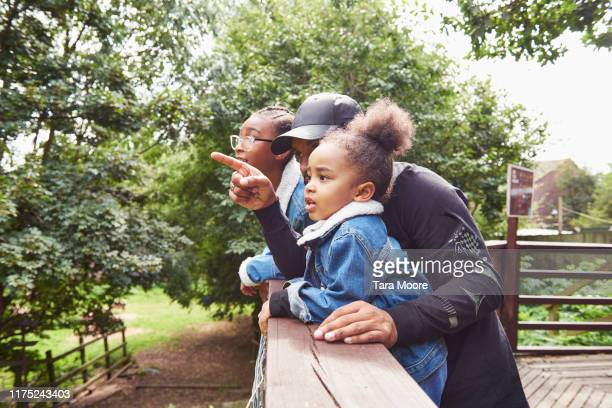 family looking out to nature - vacations stock pictures, royalty-free photos & images