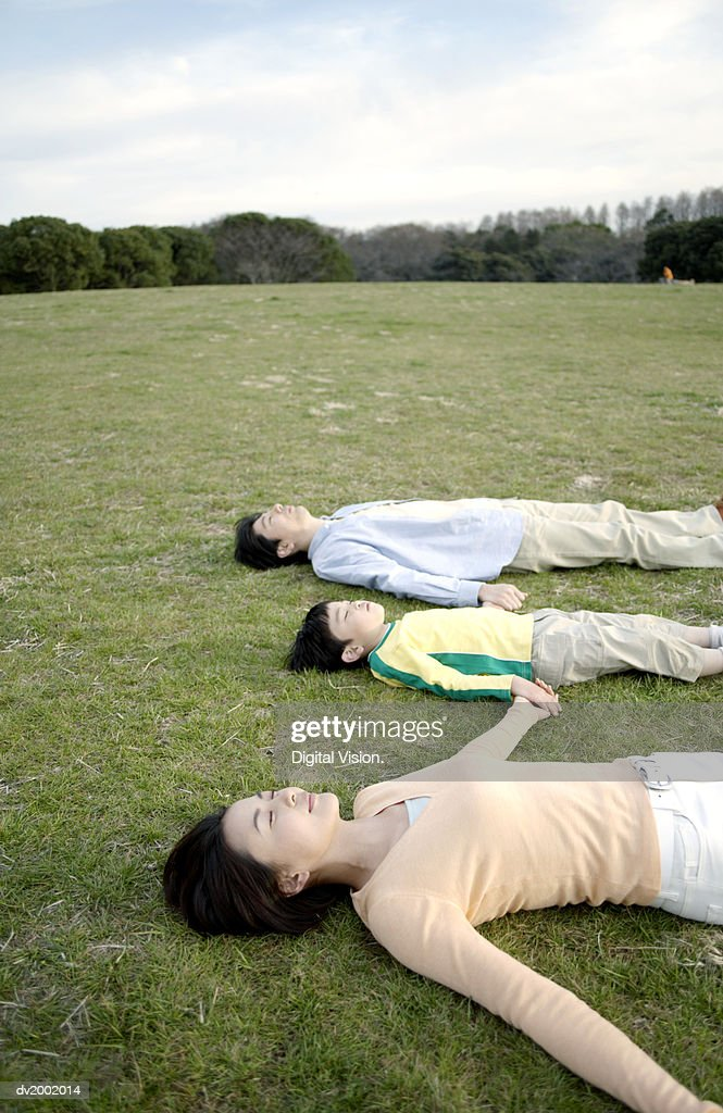 Family Lying Together on Grass and Holding Hands : Stock Photo