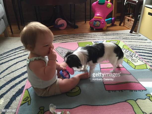 family moments - dog eats out girl stock pictures, royalty-free photos & images