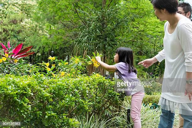 Family Observing Plants at Hong Kong Park, China