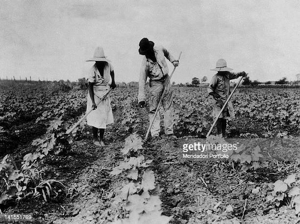 Family of black slaves working on a plantation. Saint Louis