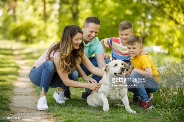 family of four people playing with their dog in public park - off leash dog park stock pictures, royalty-free photos & images
