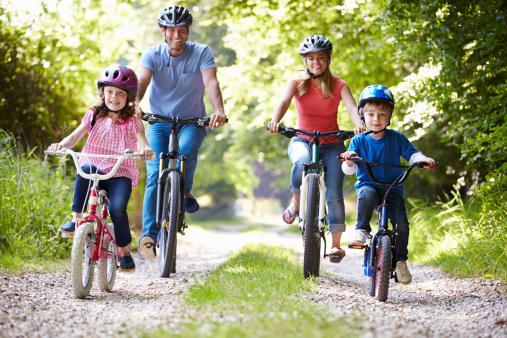 Family of four riding bikes on gravel road 462382789