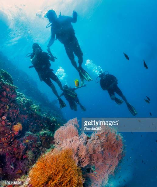 Family of Scuba Divers on vibrant coral reef