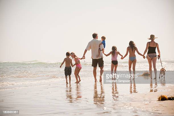family of seven walks on the beach with their dog - large family stock pictures, royalty-free photos & images