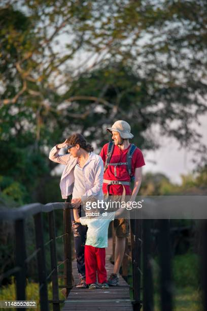 family on boardwalk hiking in pantanal wetlands - pantanal wetlands stock pictures, royalty-free photos & images