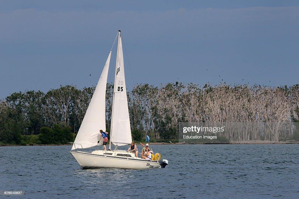 Family on small sailboat on Lake Ontario with Cormorant bird