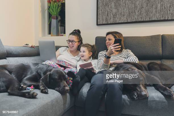 family on sofa with dogs - pet equipment stock pictures, royalty-free photos & images
