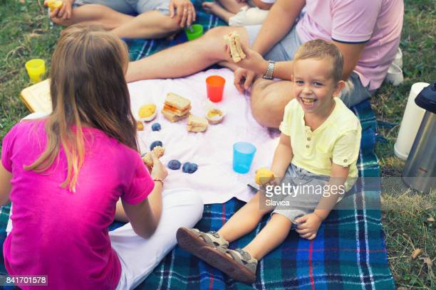 Family on the picnic in nature