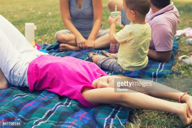 Family on the picnic in summer nature
