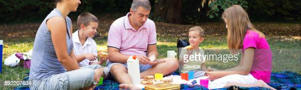 Family on the summer picnic