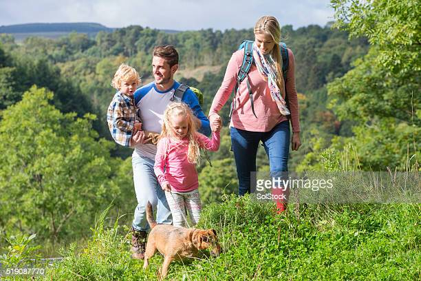 family out for a walk - northumberland stock pictures, royalty-free photos & images