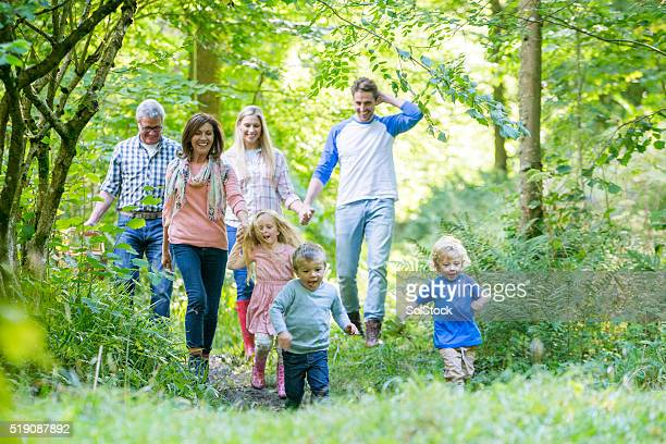 family out for a walk - woodland stock pictures, royalty-free photos & images