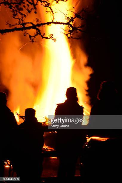 Family outdoors watching large leaping fire