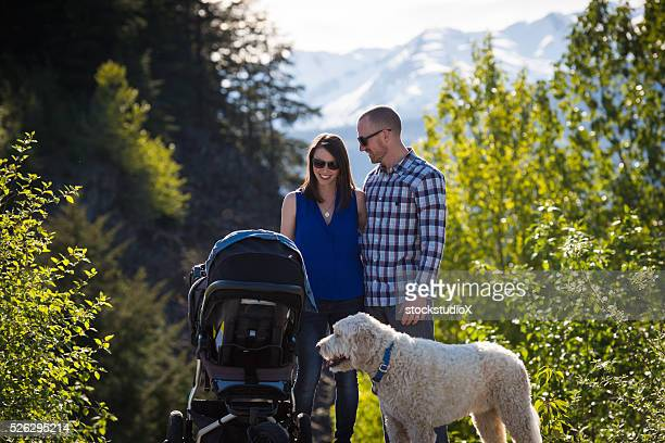 family outing - labradoodle stock photos and pictures