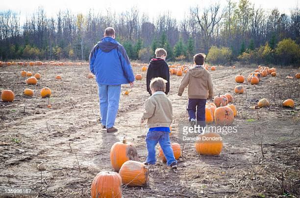 Family picks pumpkin on farm
