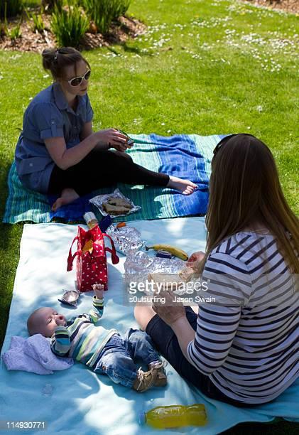 family picnic at ventnor botanical gardens - s0ulsurfing stock-fotos und bilder